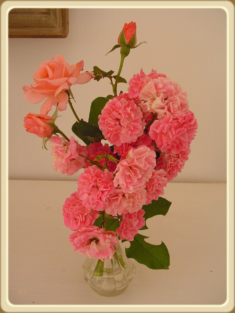 rosesdujardin.jpg